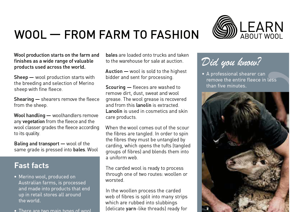 Wool — from farm to fashion