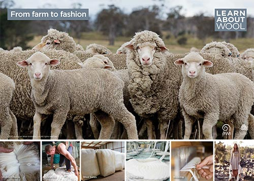 From farm to fashion