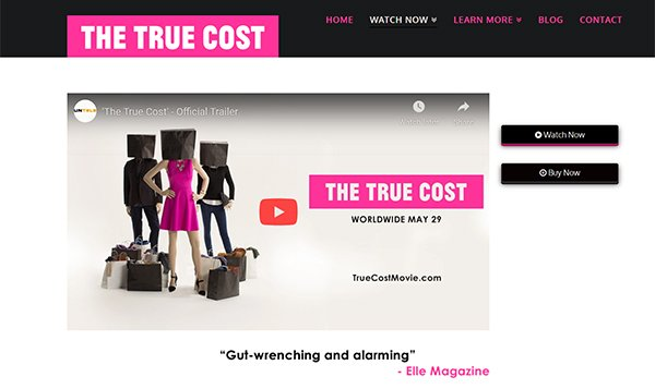 The true cost movie and website