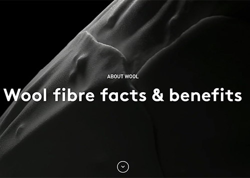 Wool - the natural fibre